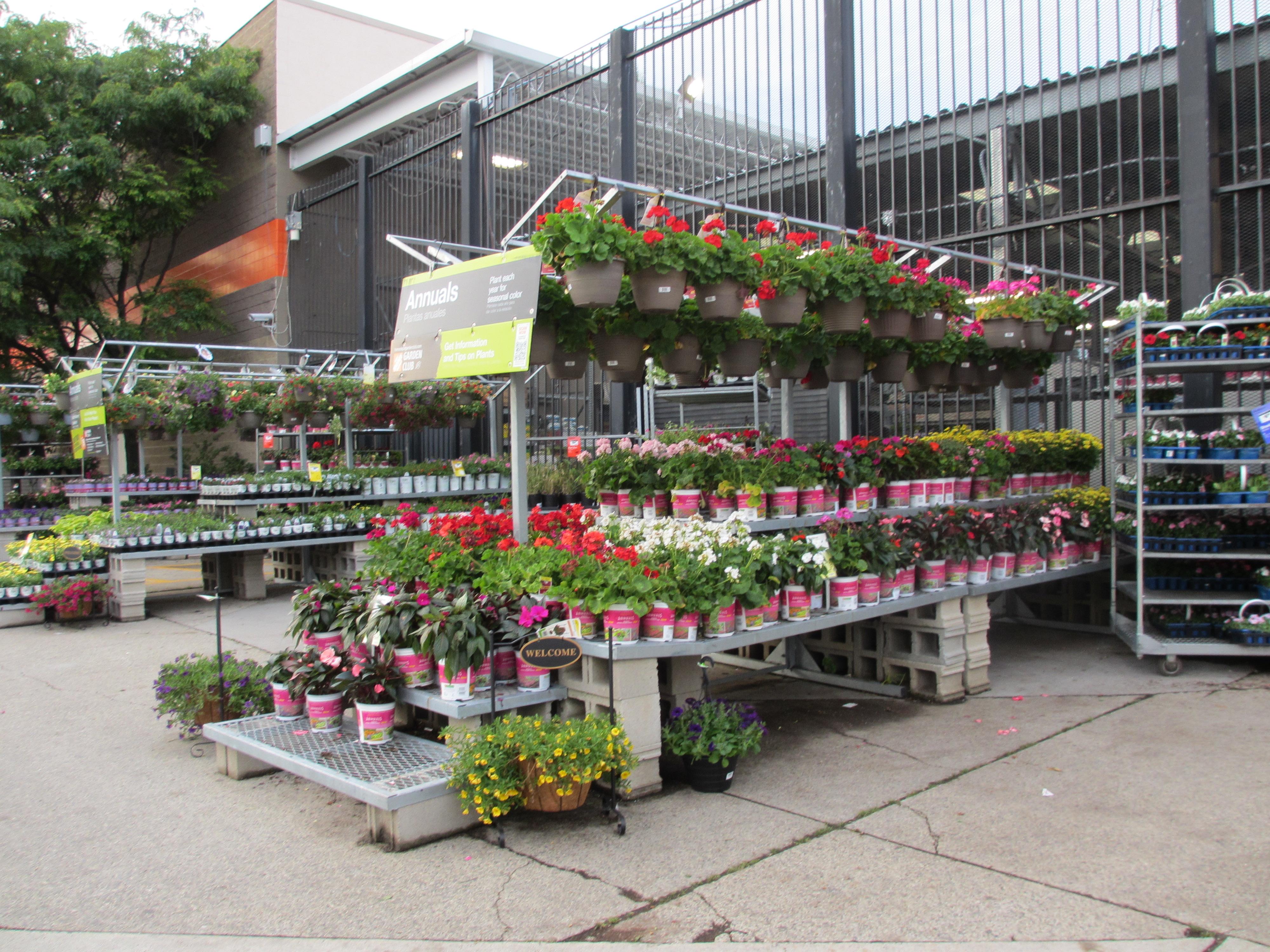 Garden Centre: My Urban Garden In The City